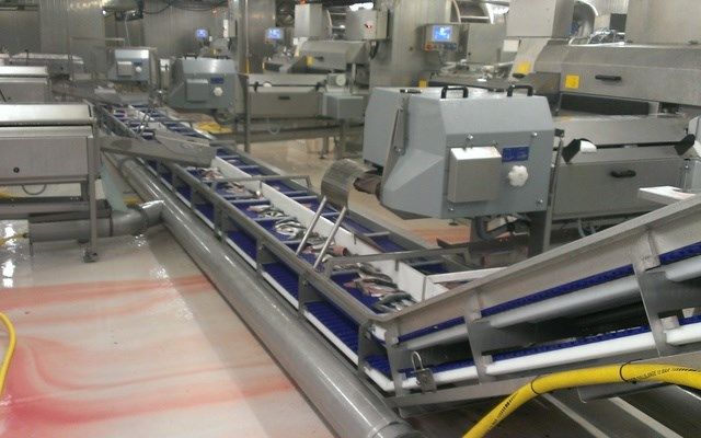 FISH PROCESSING SYSTEMS
