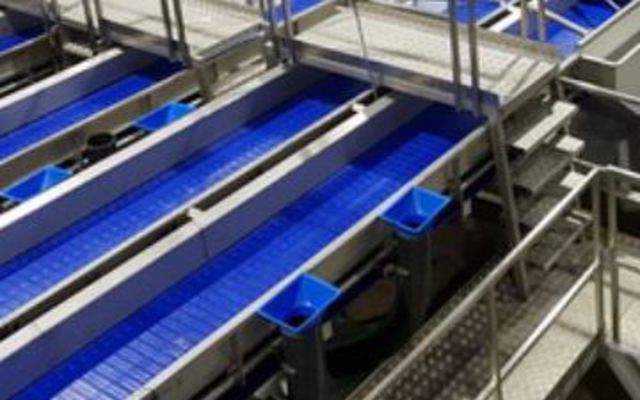 Fish Handling Distribution Systems
