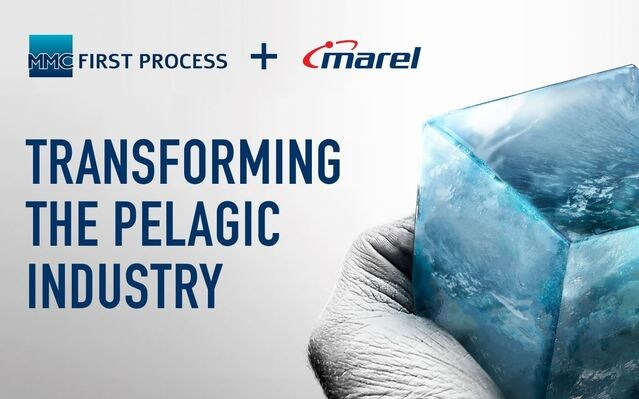 MMC First Process and Marel establish a joint venture to transform the pelagic industry.