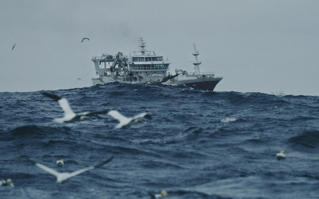 Pelagic fishing vessels